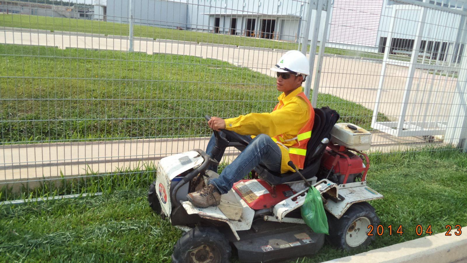Dịch vụ cắt cỏ nhung tại Bình Dương