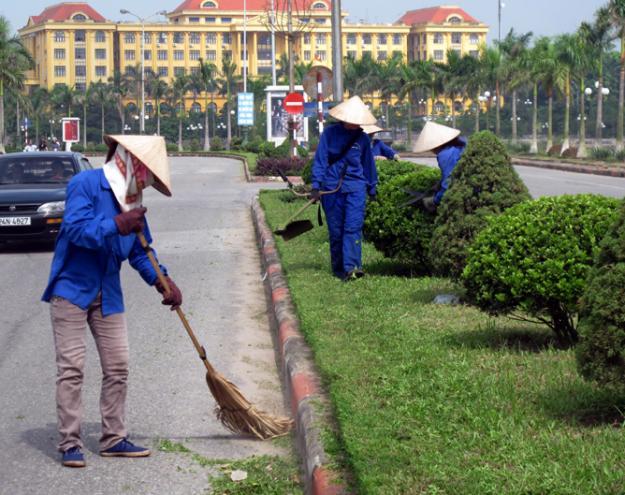 Dịch vụ chăm sóc cây xanh tại TP Hồ Chí Minh